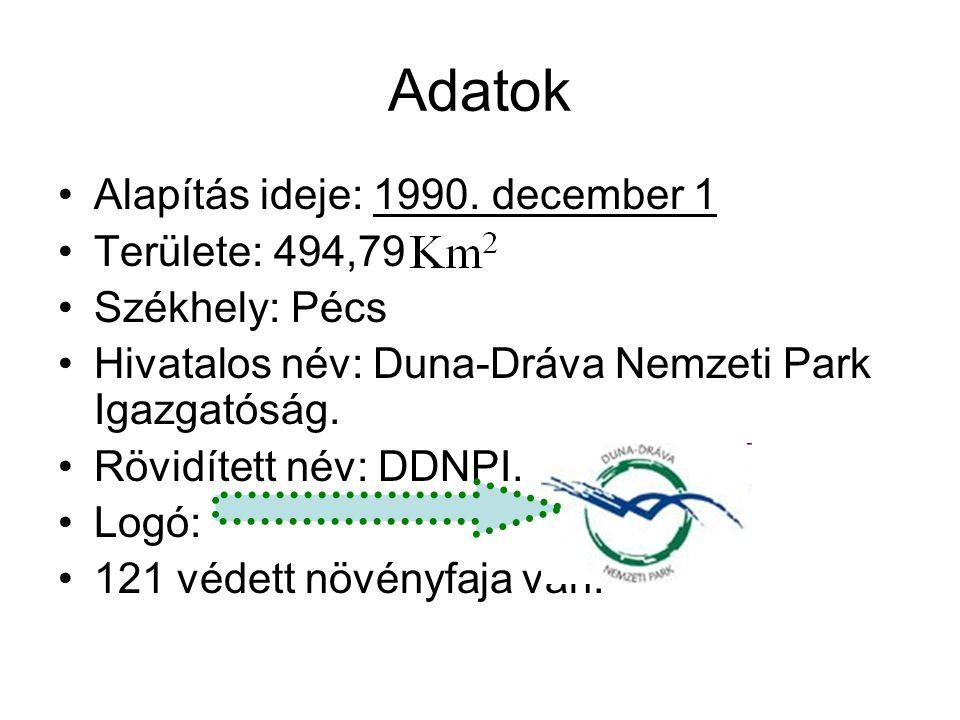 Adatok Alapítás ideje: 1990.