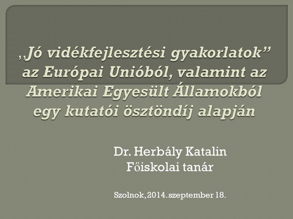 Dr. Herbály Katalin F ő iskolai tanár Szolnok, 2014. szeptember 18.