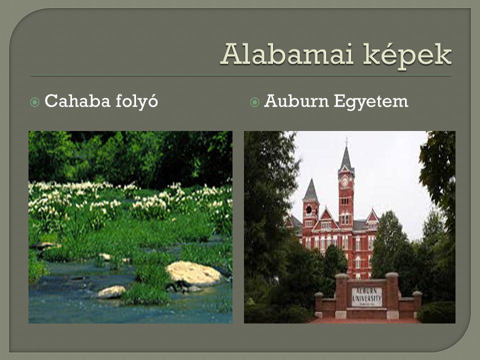  Cahaba folyó  Auburn Egyetem