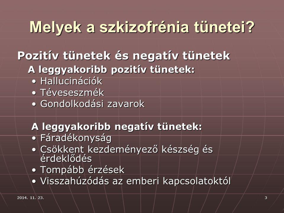 2014. 11. 23.2014. 11. 23.2014. 11. 23.3 Melyek a szkizofrénia tünetei? Pozitív tünetek és negatív tünetek A leggyakoribb pozitív tünetek: Hallucináci