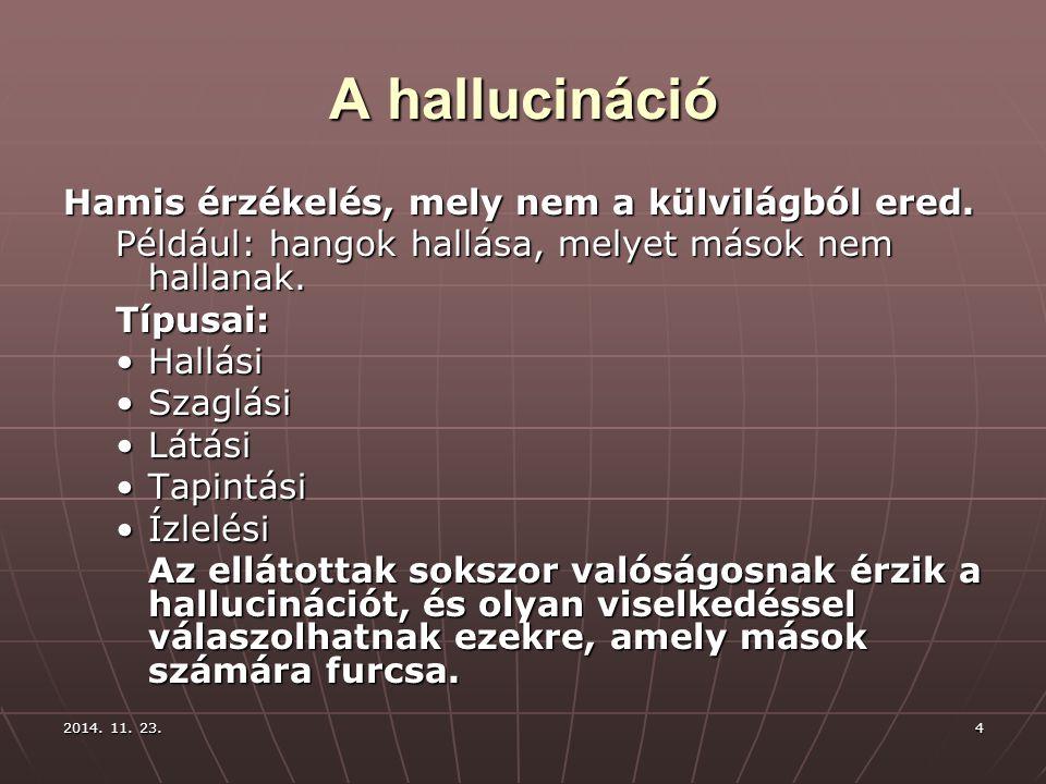 2014. 11. 23.2014. 11. 23.2014. 11. 23.4 A hallucináció Hamis érzékelés, mely nem a külvilágból ered. Például: hangok hallása, melyet mások nem hallan