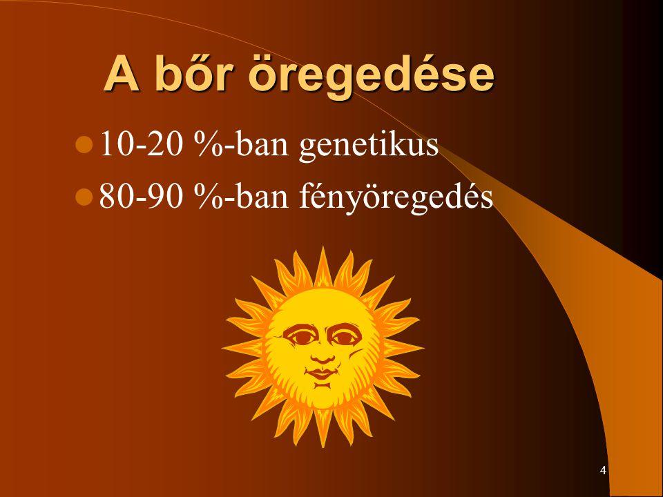 4 A bőr öregedése 10-20 %-ban genetikus 80-90 %-ban fényöregedés