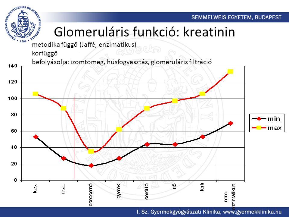 Glomeruláris funkció: kreatinin metodika függő (Jaffé, enzimatikus) korfüggő befolyásolja: izomtömeg, húsfogyasztás, glomeruláris filtráció