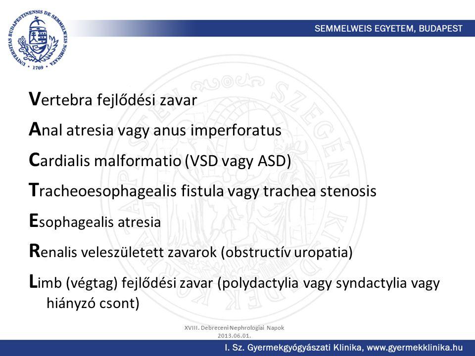 V ertebra fejlődési zavar A nal atresia vagy anus imperforatus C ardialis malformatio (VSD vagy ASD) T racheoesophagealis fistula vagy trachea stenosi