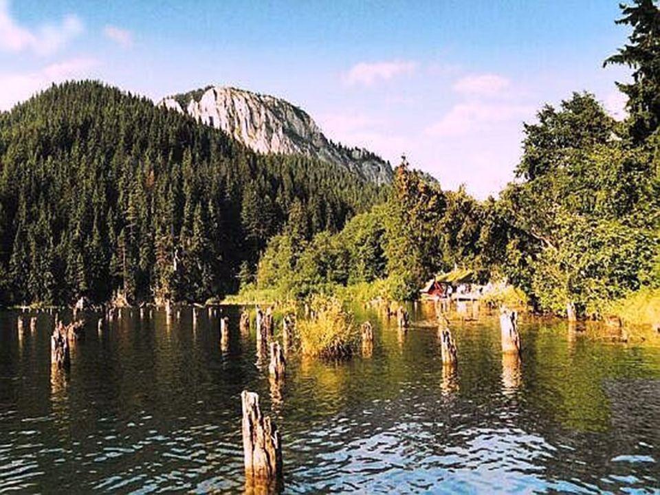 A Gyilkos tó, régi nevén Veres tó, 1837 júliusában képződött a Gyilkos hegy és a Cohárd hegy összecsúszásából. A leomló törmelék elzárta a Veres patak