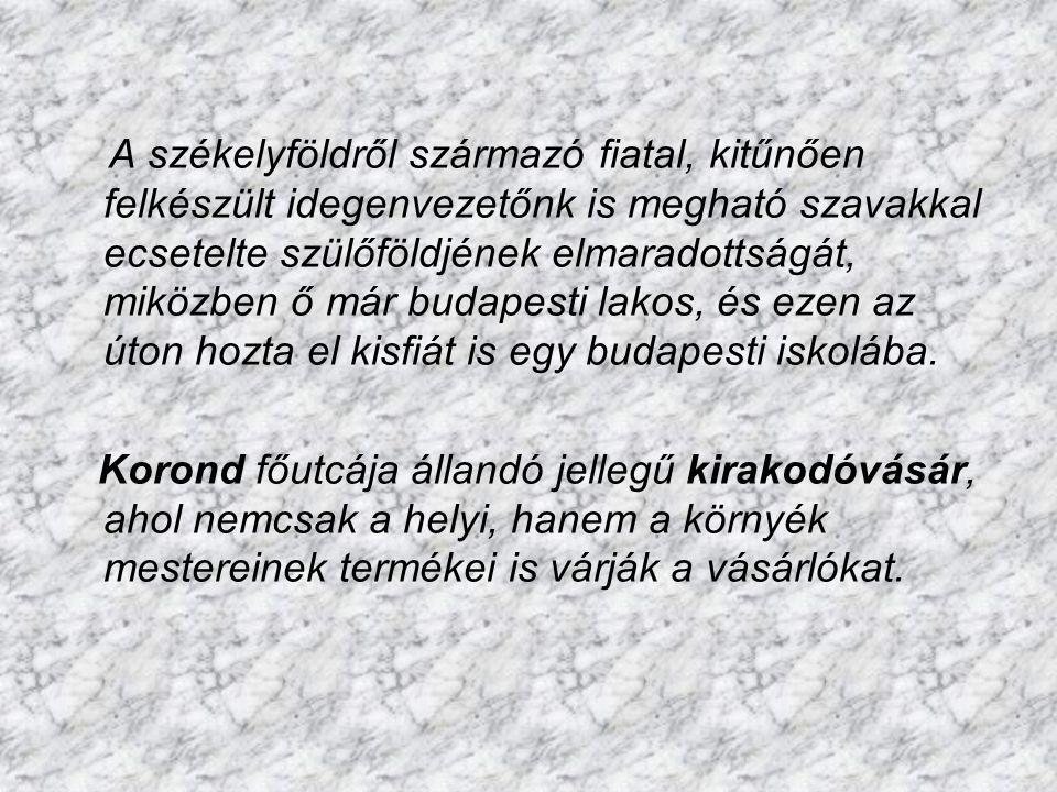 Tordaszentlászlón volt a szállásunk, egy magyar családnál. A viszonylag szerény körülmények között élő néni szeretettel fogadott bennünket, de tele vo