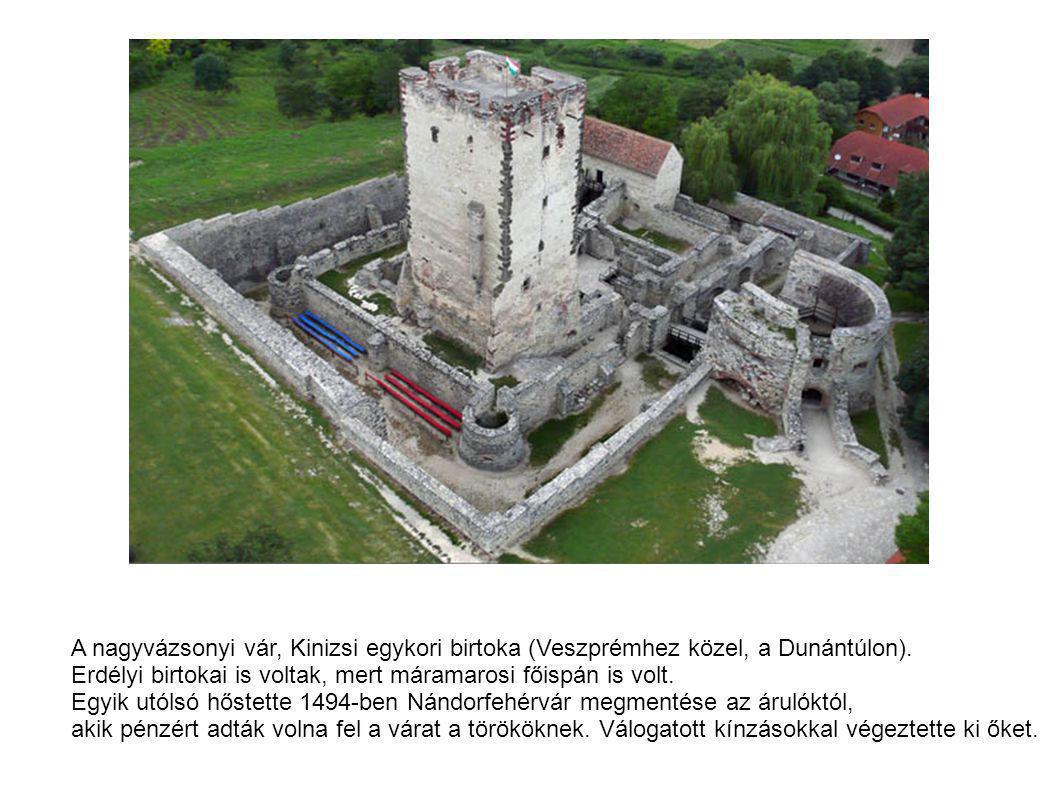 A nagyvázsonyi vár, Kinizsi egykori birtoka (Veszprémhez közel, a Dunántúlon). Erdélyi birtokai is voltak, mert máramarosi főispán is volt. Egyik utól