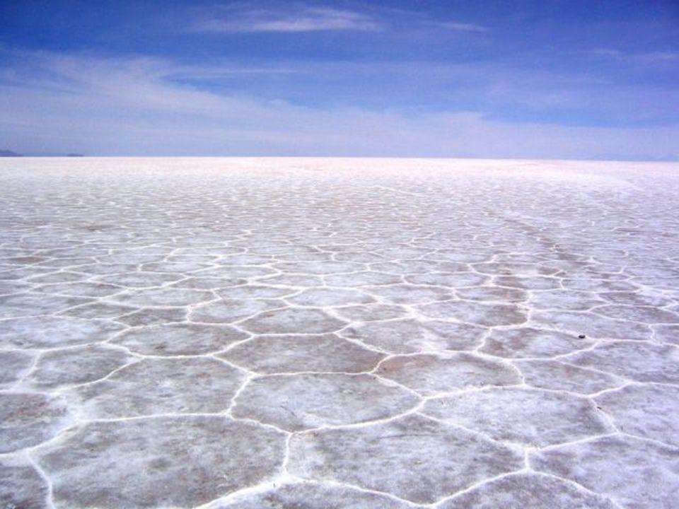 A sivatag hatalmas mennyiségben tartalmaz litiumot, bórt, káliumot magnéziumot.