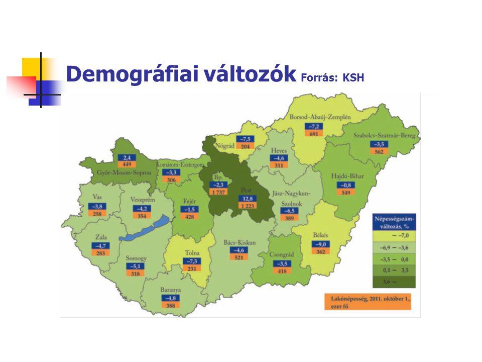 Demográfiai változók Forrás: KSH