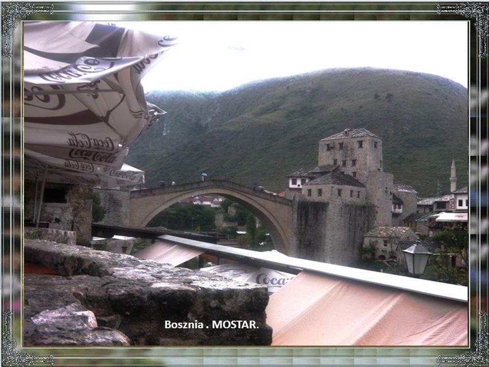 Dubrovnik. Városi kút és kat. templom.