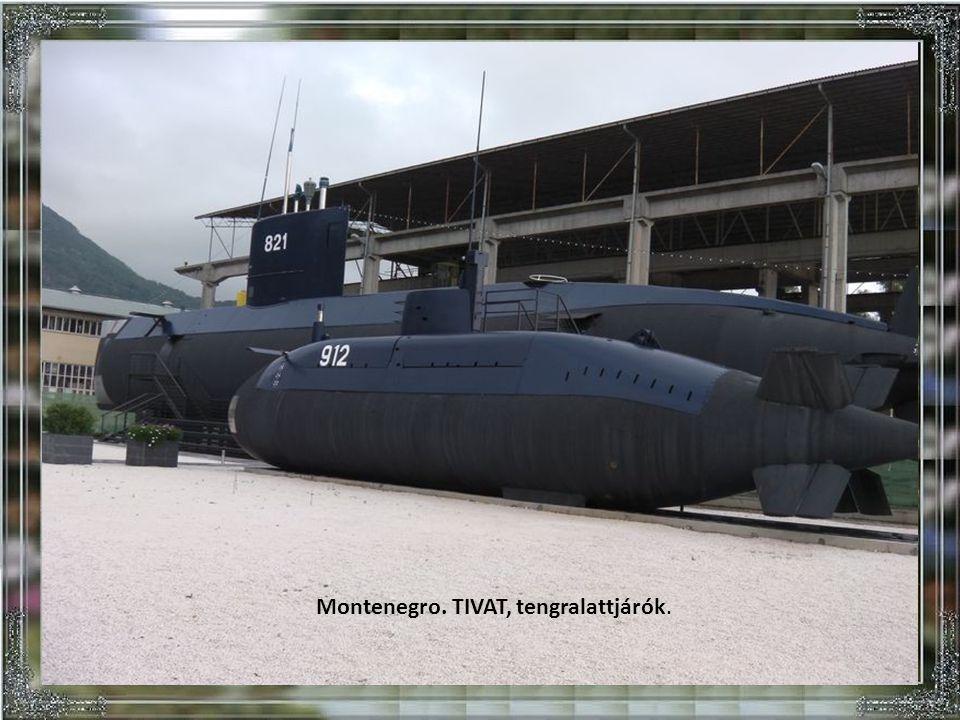 Montenegro. TIVAT, tengralattjárók.