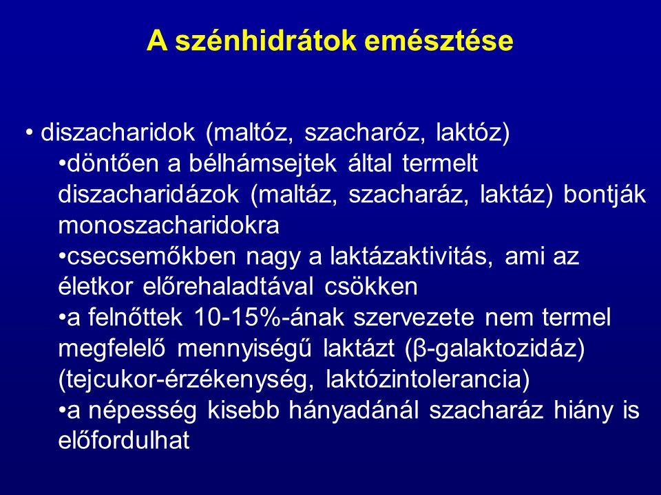 diszacharidok (maltóz, szacharóz, laktóz) döntően a bélhámsejtek által termelt diszacharidázok (maltáz, szacharáz, laktáz) bontják monoszacharidokra c