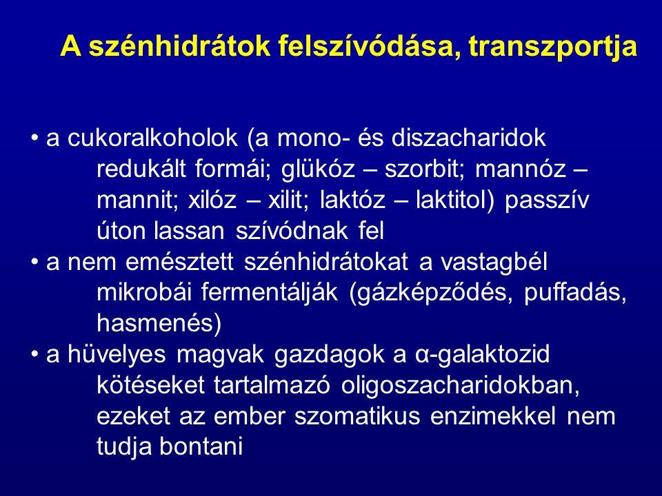 a cukoralkoholok (a mono- és diszacharidok redukált formái; glükóz – szorbit; mannóz – mannit; xilóz – xilit; laktóz – laktitol) passzív úton lassan s
