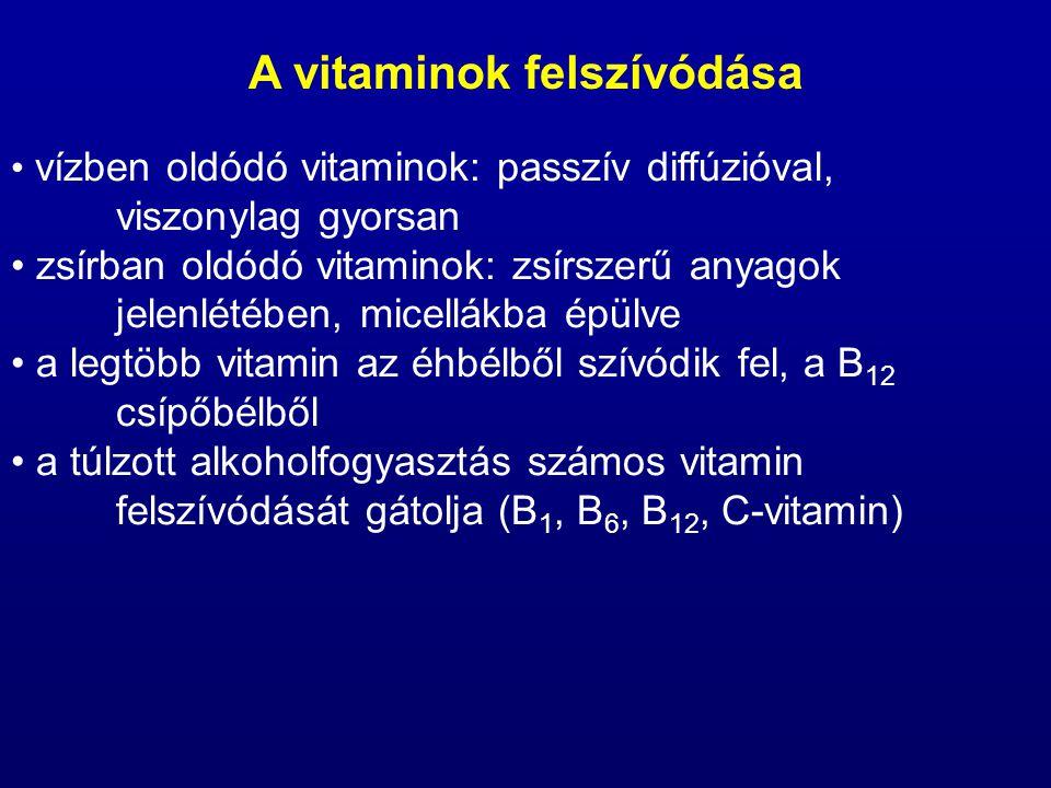 vízben oldódó vitaminok: passzív diffúzióval, viszonylag gyorsan zsírban oldódó vitaminok: zsírszerű anyagok jelenlétében, micellákba épülve a legtöbb