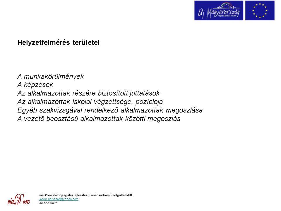 viaD'oro Közigazgatásfejlesztési Tanácsadó és Szolgáltató kft.arop.palyazat@yahoo.com 30-555-9096 Helyzetfelmérés területei A munkakörülmények A képzések Az alkalmazottak részére biztosított juttatások Az alkalmazottak iskolai végzettsége, pozíciója Egyéb szakvizsgával rendelkező alkalmazottak megoszlása A vezető beosztású alkalmazottak közötti megoszlás