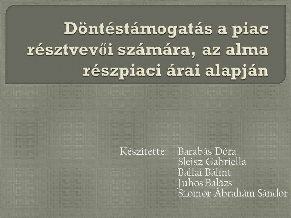 Készítette: Barabás Dóra Sleisz Gabriella Ballai Bálint Juhos Balázs Szomor Ábrahám Sándor