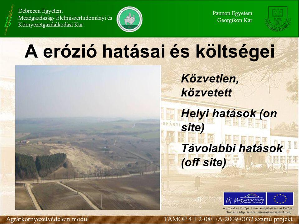 A erózió hatásai és költségei Közvetlen, közvetett Helyi hatások (on site) Távolabbi hatások (off site)