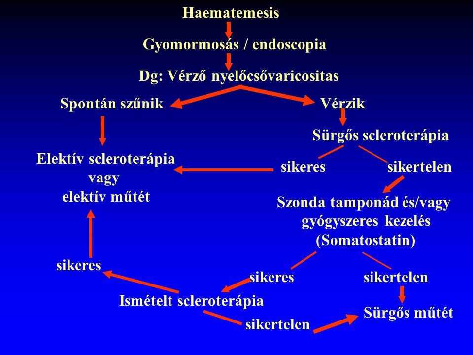 Haematemesis Gyomormosás / endoscopia Dg: Vérző nyelőcsővaricositas Spontán szűnikVérzik Sürgős scleroterápia sikertelensikeres Szonda tamponád és/vag