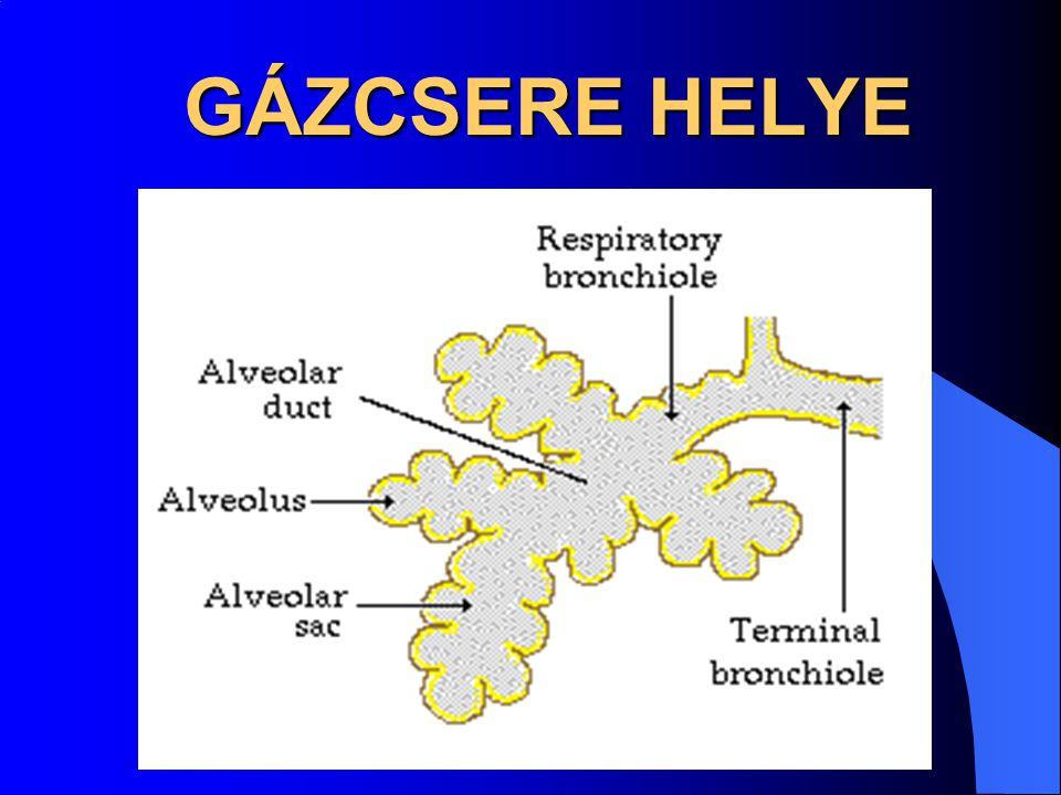 GÁZCSERE HELYE GÁZCSERE HELYE