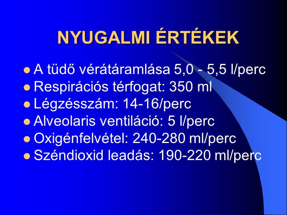 NYUGALMI ÉRTÉKEK A tüdő vérátáramlása 5,0 - 5,5 l/perc Respirációs térfogat: 350 ml Légzésszám: 14-16/perc Alveolaris ventiláció: 5 l/perc Oxigénfelvé