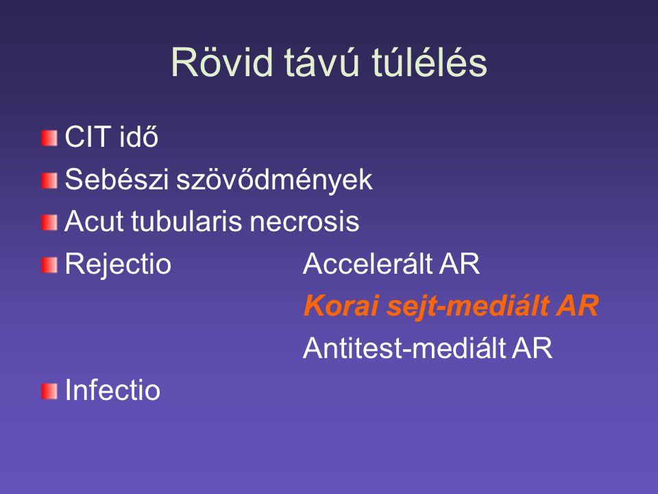Rövid távú túlélés CIT idő Sebészi szövődmények Acut tubularis necrosis Rejectio Accelerált AR Korai sejt-mediált AR Antitest-mediált AR Infectio