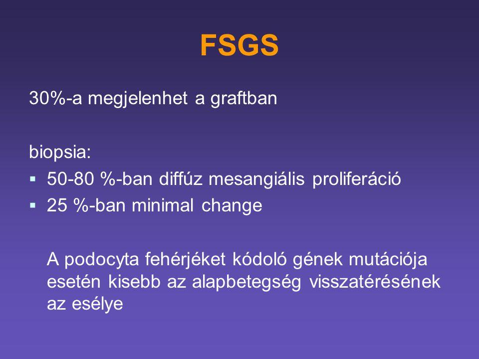 FSGS 30%-a megjelenhet a graftban biopsia:   50-80 %-ban diffúz mesangiális proliferáció   25 %-ban minimal change A podocyta fehérjéket kódoló gé