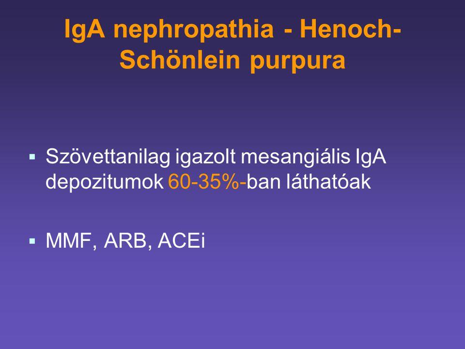 IgA nephropathia - Henoch- Schönlein purpura   Szövettanilag igazolt mesangiális IgA depozitumok 60-35%-ban láthatóak   MMF, ARB, ACEi
