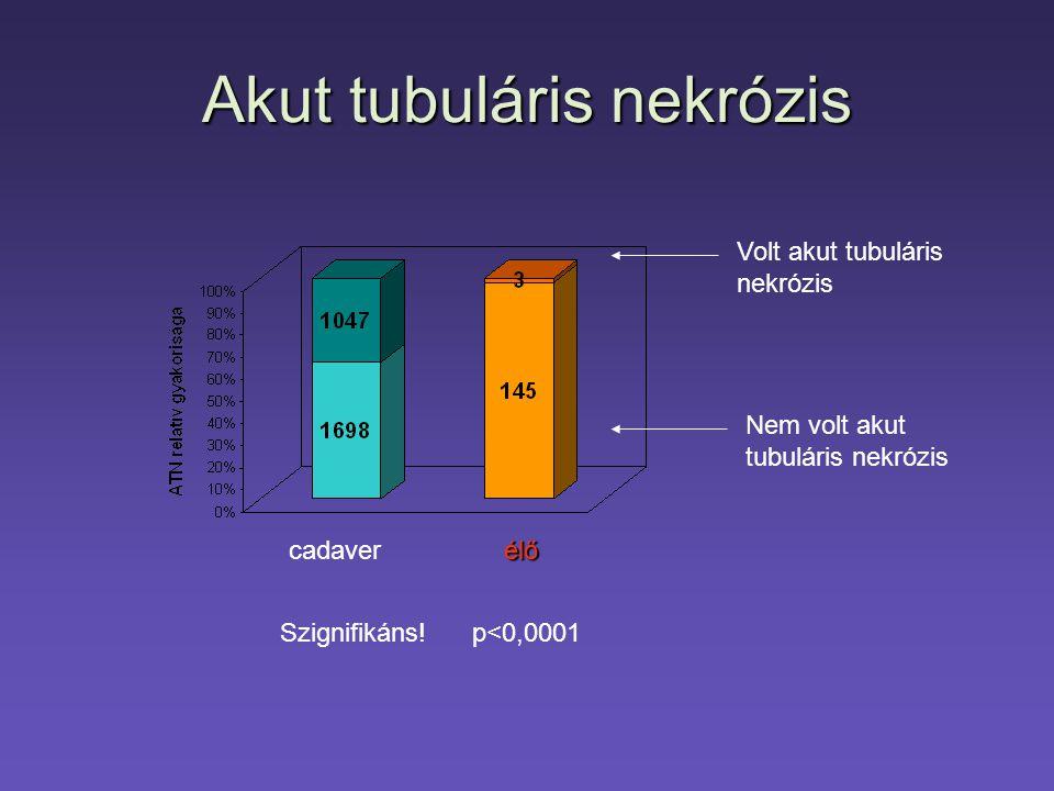 Akut tubuláris nekrózis Szignifikáns! p<0,0001 cadaverélő Volt akut tubuláris nekrózis Nem volt akut tubuláris nekrózis