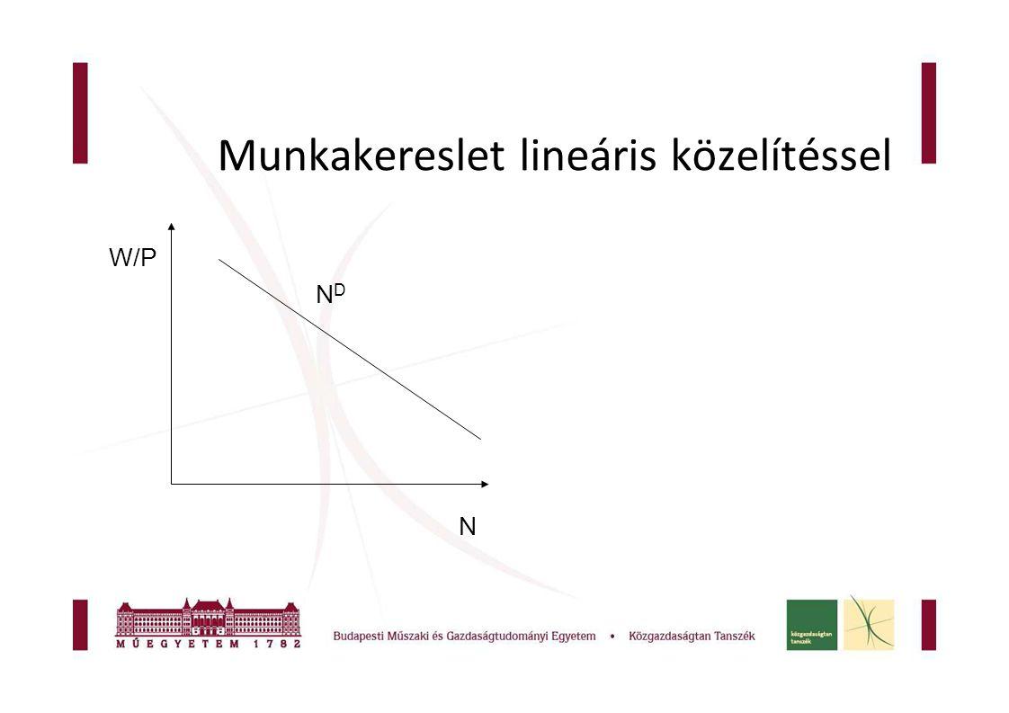 Munkakereslet lineáris közelítéssel NDND N W/P