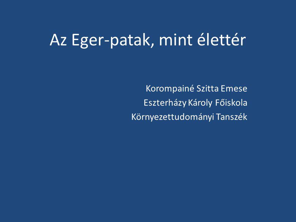 Az Eger-patak, mint élettér Korompainé Szitta Emese Eszterházy Károly Főiskola Környezettudományi Tanszék