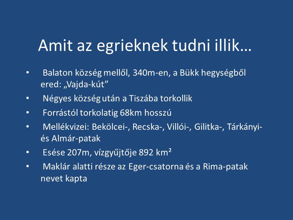 """Amit az egrieknek tudni illik… Balaton község mellől, 340m-en, a Bükk hegységből ered: """"Vajda-kút Négyes község után a Tiszába torkollik Forrástól torkolatig 68km hosszú Mellékvizei: Bekölcei-, Recska-, Villói-, Gilitka-, Tárkányi- és Almár-patak Esése 207m, vízgyűjtője 892 km² Maklár alatti része az Eger-csatorna és a Rima-patak nevet kapta"""