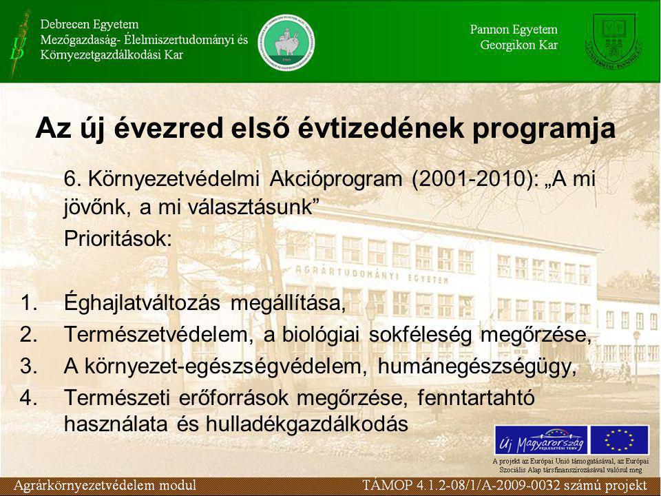 Az új évezred első évtizedének programja 6.