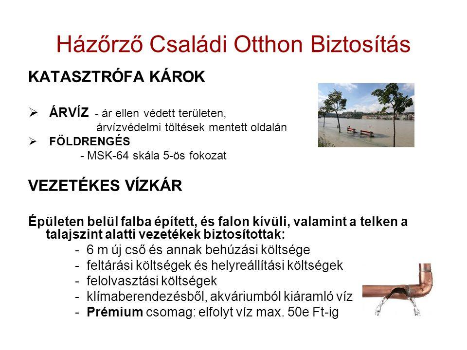 Házőrző Családi Otthon Biztosítás KATASZTRÓFA KÁROK  ÁRVÍZ - ár ellen védett területen, árvízvédelmi töltések mentett oldalán  FÖLDRENGÉS - MSK-64 s