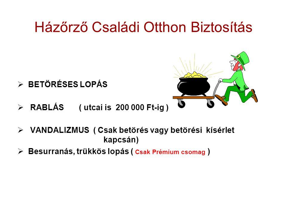 Házőrző Családi Otthon Biztosítás  BETÖRÉSES LOPÁS  RABLÁS ( utcai is 200 000 Ft-ig )  VANDALIZMUS ( Csak betörés vagy betörési kísérlet kapcsán) 