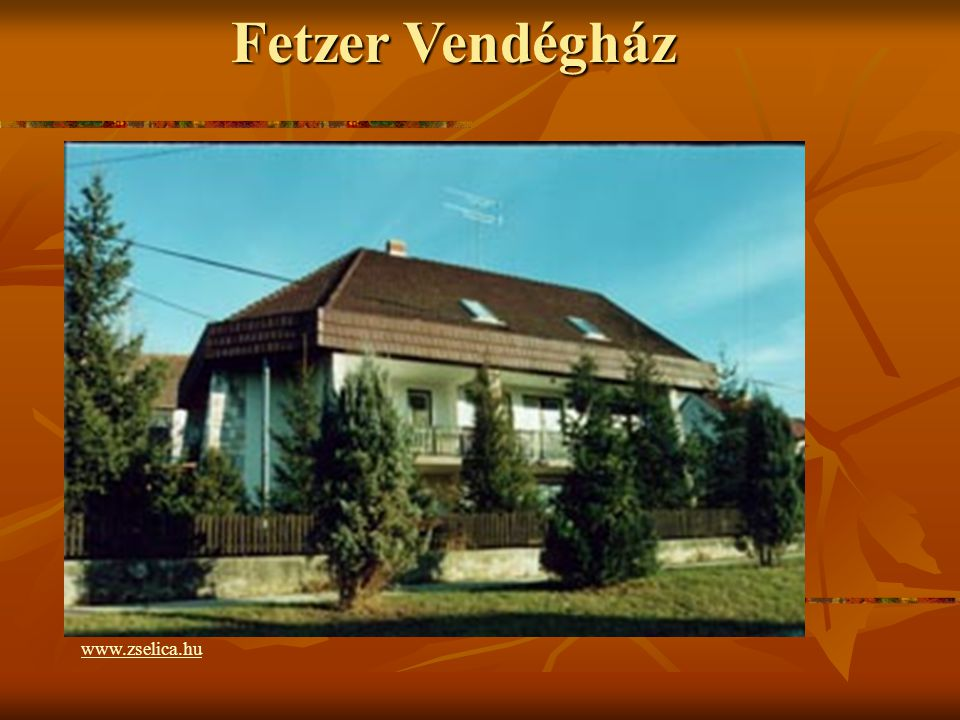 Horgásztó http://www.zselica.hu/?page=f14.html