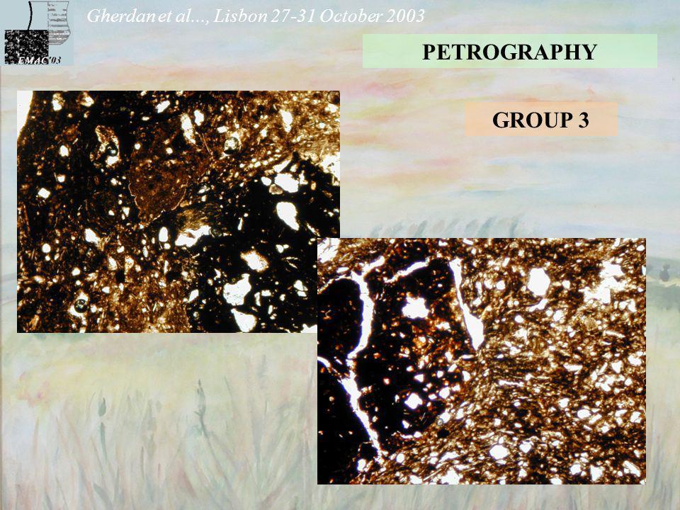 Gherdan et al..., Lisbon 27-31 October 2003 PETROGRAPHY GROUP 3