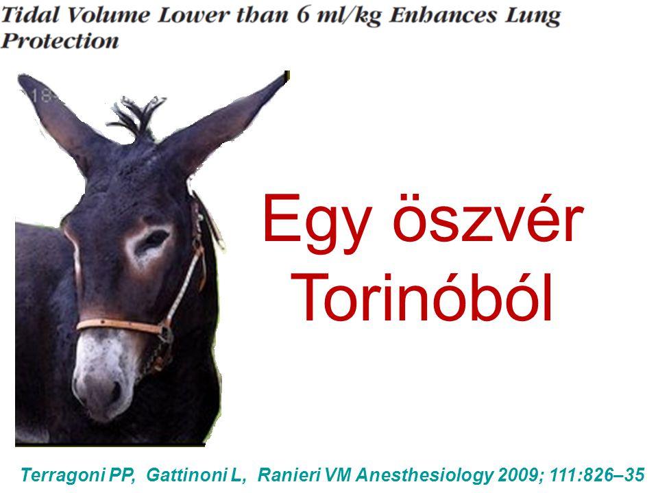 Terragoni PP, Gattinoni L, Ranieri VM Anesthesiology 2009; 111:826–35 Egy öszvér Torinóból