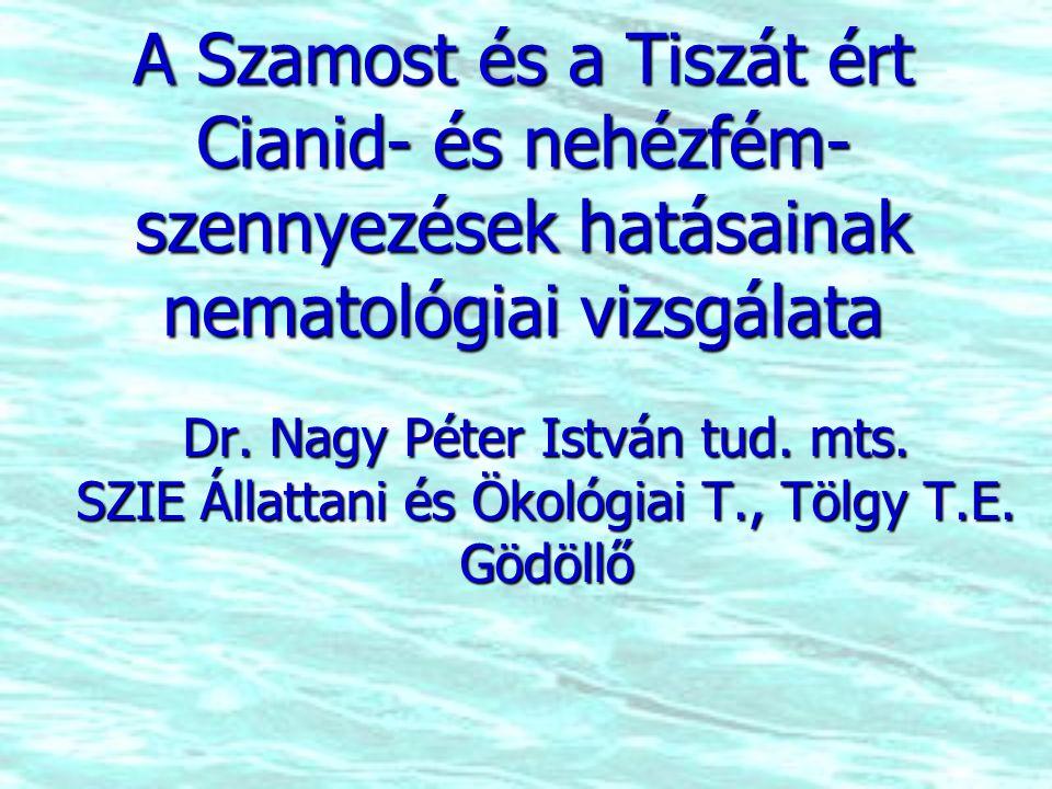 A Szamost és a Tiszát ért Cianid- és nehézfém- szennyezések hatásainak nematológiai vizsgálata Dr.