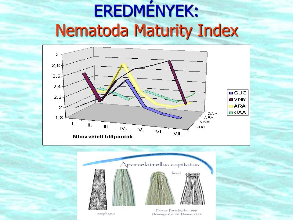 EREDMÉNYEK: Nematoda Maturity Index