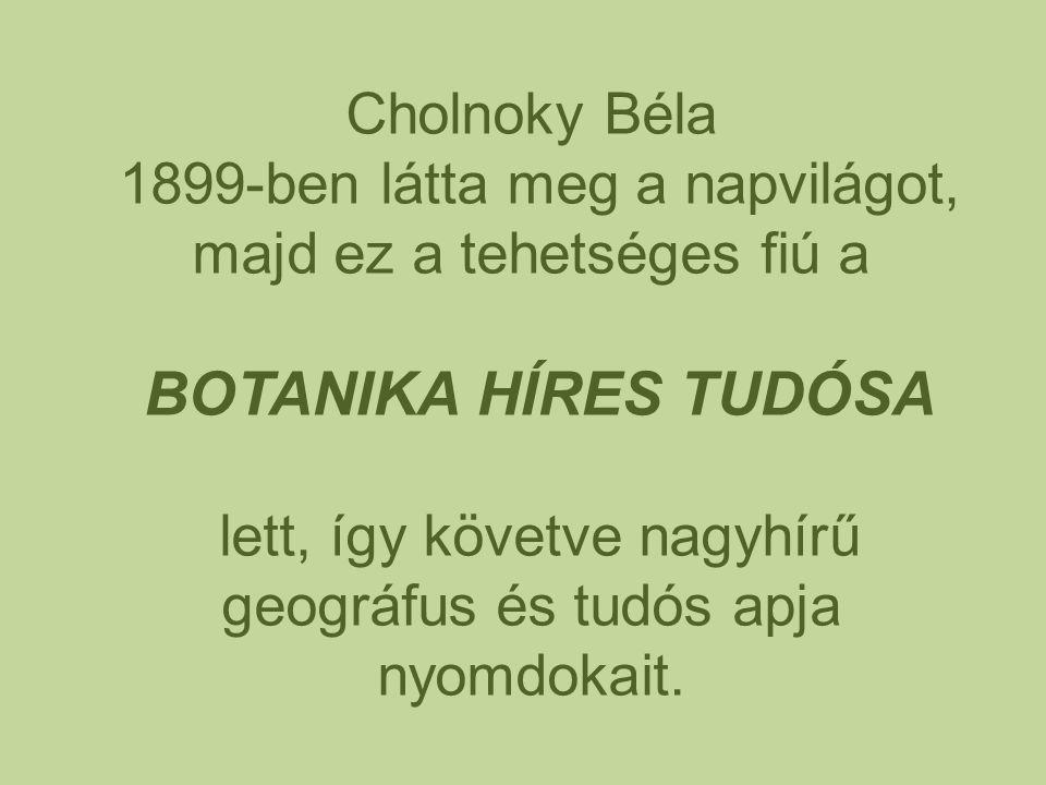 Cholnoky Béla 1899-ben látta meg a napvilágot, majd ez a tehetséges fiú a BOTANIKA HÍRES TUDÓSA lett, így követve nagyhírű geográfus és tudós apja nyo
