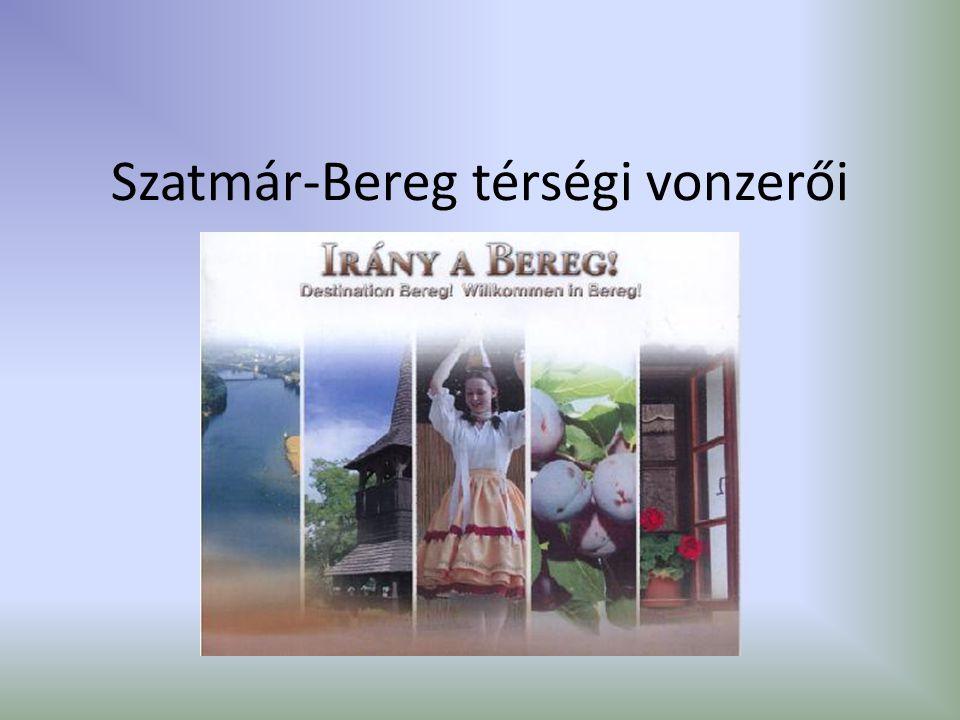 Szatmár-Bereg térségi vonzerői