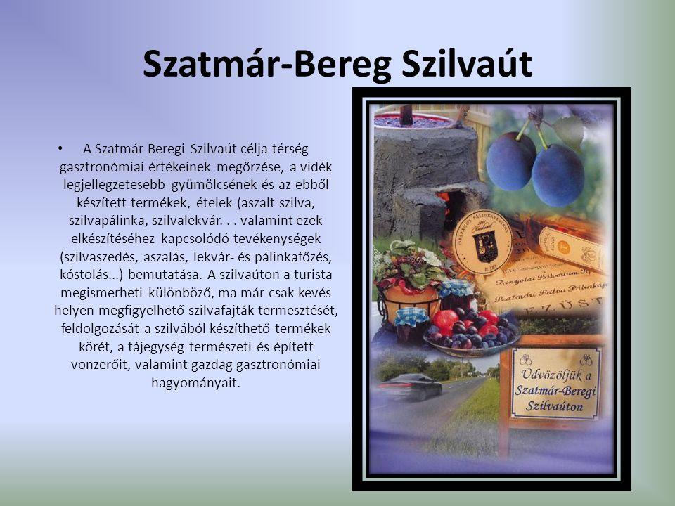 Szatmár-Bereg Szilvaút A Szatmár-Beregi Szilvaút célja térség gasztronómiai értékeinek megőrzése, a vidék legjellegzetesebb gyümölcsének és az ebből k