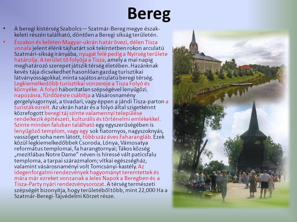 Bereg A beregi kistérség Szabolcs— Szatmár-Bereg megye észak- keleti részén található, döntően a Beregi síkság területén.