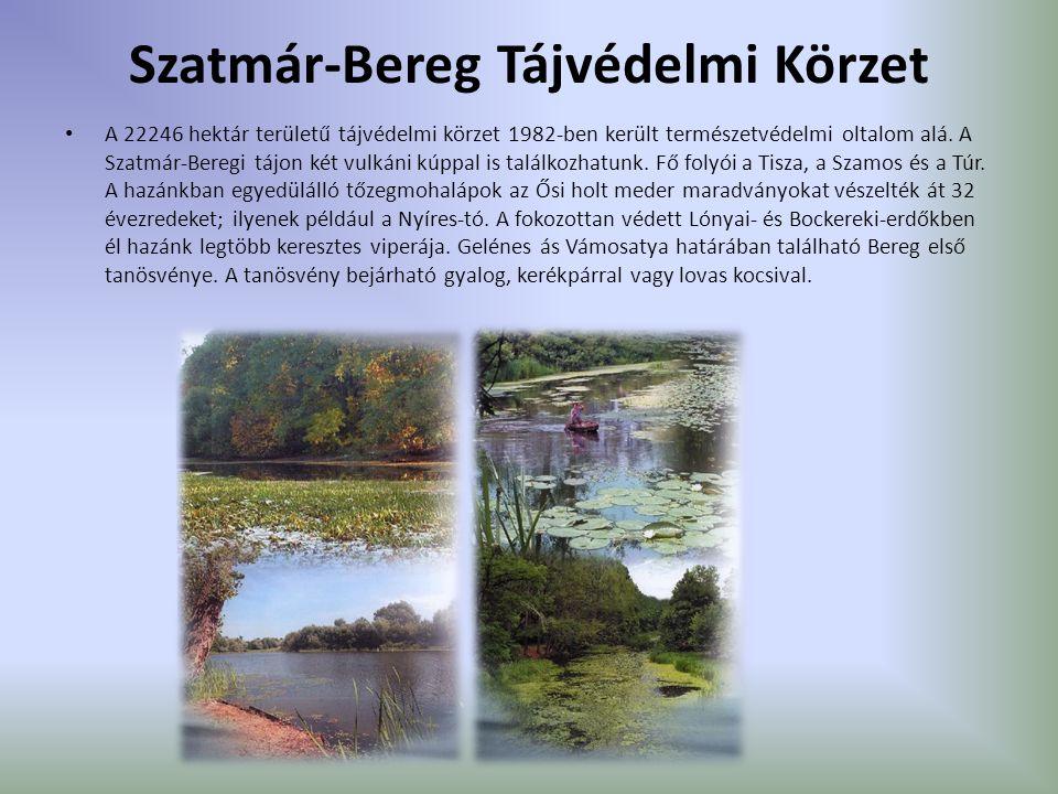 Szatmár-Bereg Tájvédelmi Körzet A 22246 hektár területű tájvédelmi körzet 1982-ben került természetvédelmi oltalom alá. A Szatmár-Beregi tájon két vul