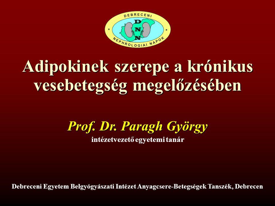Adipokinek szerepe a krónikus vesebetegség megelőzésében Prof. Dr. Paragh György intézetvezető egyetemi tanár Debreceni Egyetem Belgyógyászati Intézet