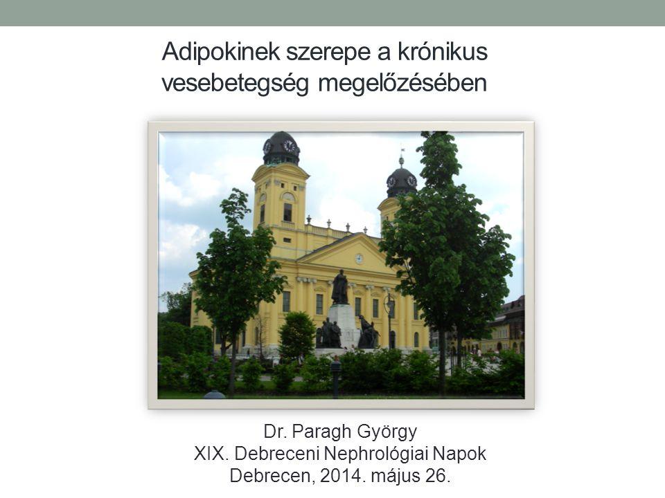 Adipokinek szerepe a krónikus vesebetegség megelőzésében Dr. Paragh György XIX. Debreceni Nephrológiai Napok Debrecen, 2014. május 26.