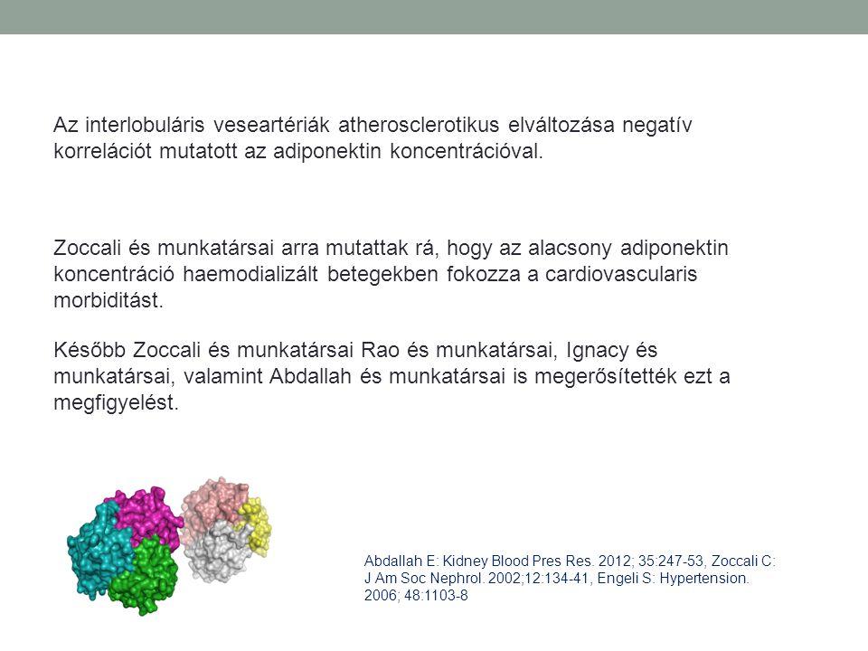 Az interlobuláris veseartériák atherosclerotikus elváltozása negatív korrelációt mutatott az adiponektin koncentrációval. Zoccali és munkatársai arra
