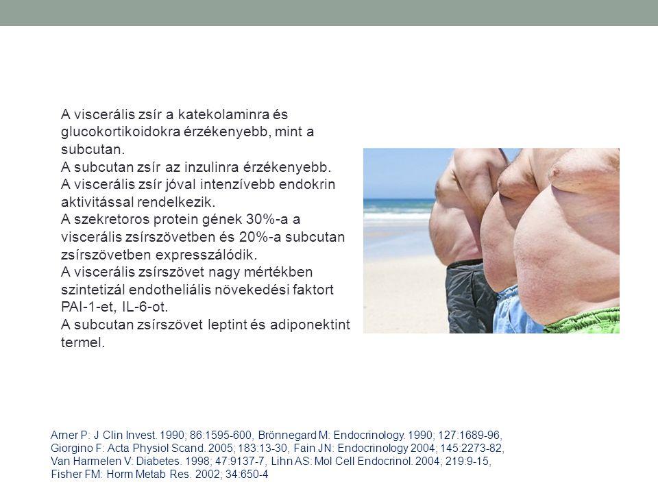 A viscerális zsír a katekolaminra és glucokortikoidokra érzékenyebb, mint a subcutan. A subcutan zsír az inzulinra érzékenyebb. A viscerális zsír jóva