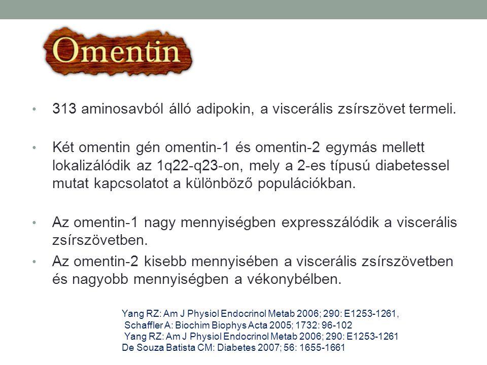 313 aminosavból álló adipokin, a viscerális zsírszövet termeli. Két omentin gén omentin-1 és omentin-2 egymás mellett lokalizálódik az 1q22-q23-on, me