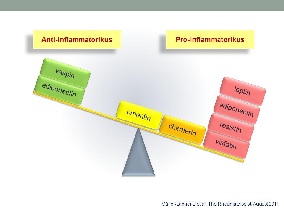 Müller-Ladner U et al. The Rheumatologist, August 2011 adiponectin omentin chemerin visfatin resistin adiponectin Anti-inflammatorikus Pro-inflammator